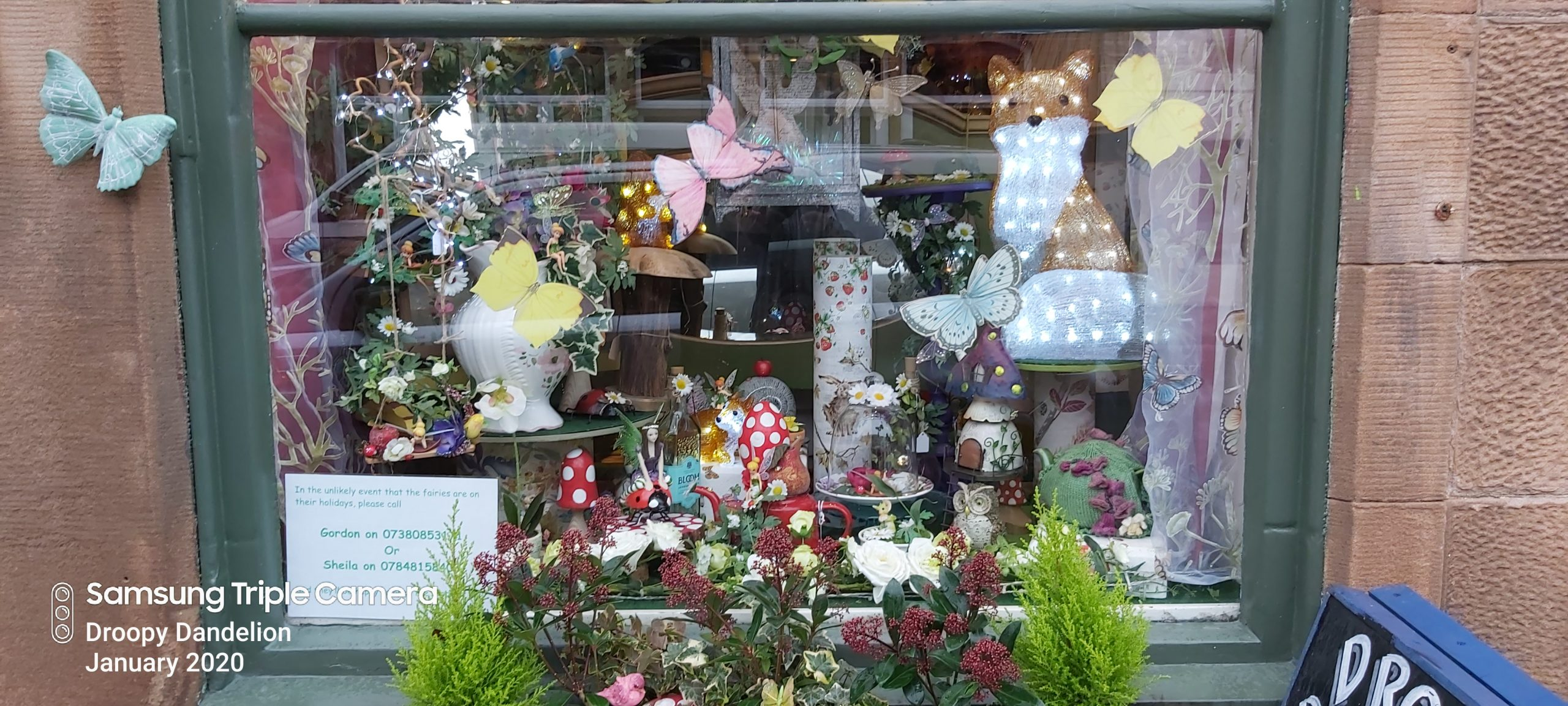 Fairy-tastic Shop Window for Spring